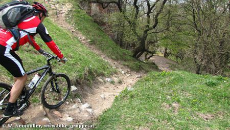 MTB-Techniktraining